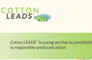 Walmart and the Cotton Leads program
