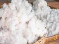 Official spot rate by Karachi Cotton Association