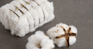 PCGA issues cotton figures